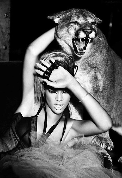 Rihanna_cougar photo shoot