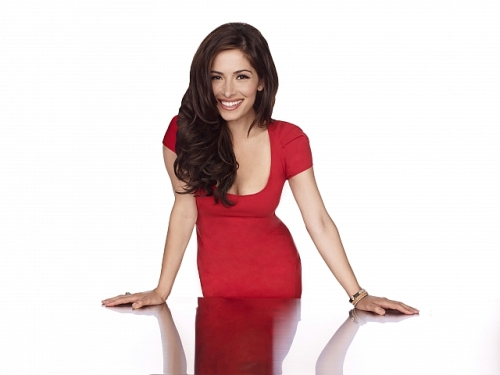 Fairly_Legal_S1_Sarah_Shahi